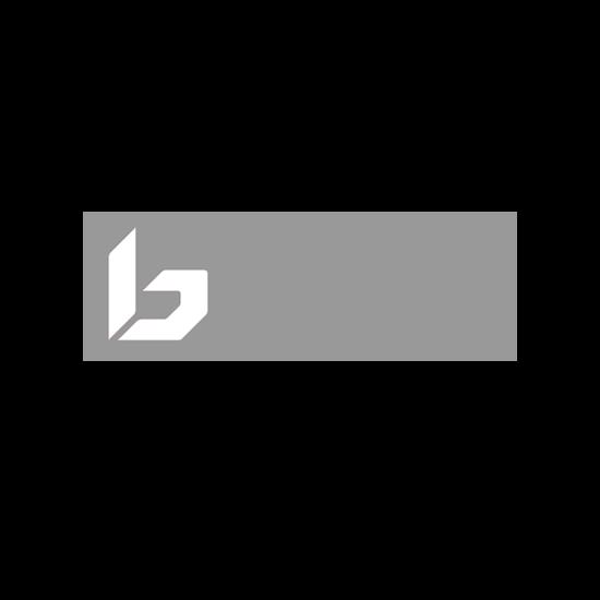 Bild zeigt das Logo des Skihelm und Skibrillen Herstellers Bolle.