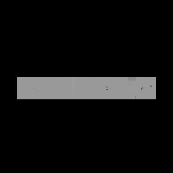 Bild zeigt das Logo des Ski und Sportartikel Herstellers Rossignol.